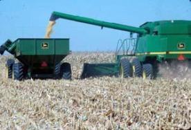 Corn Harvest - CropWatch
