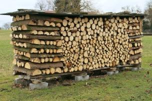 Firewood - 1 pixabay