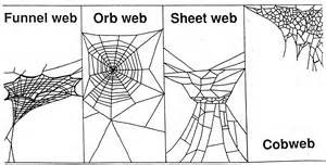 types of webs