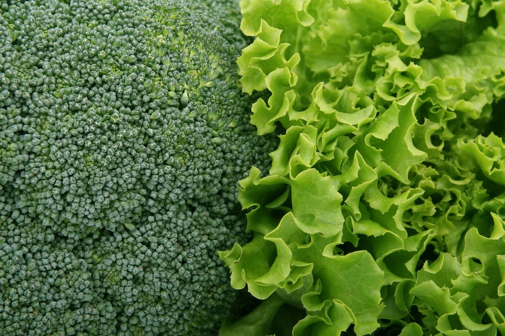 broccoli-1239430_1920