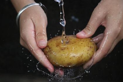 potato-2469750_1920