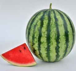 Watermelon-Mambo